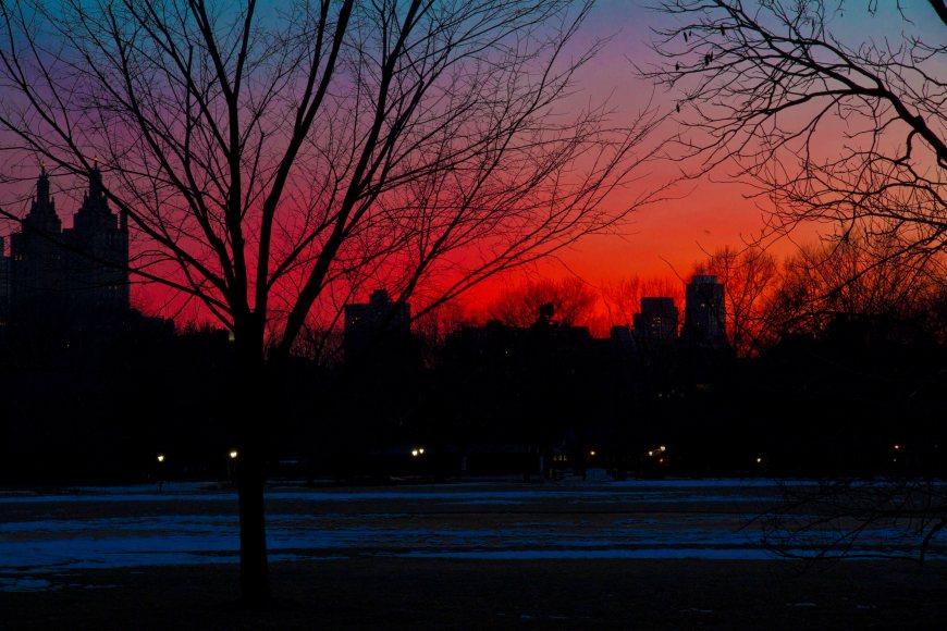 Central Park-NY